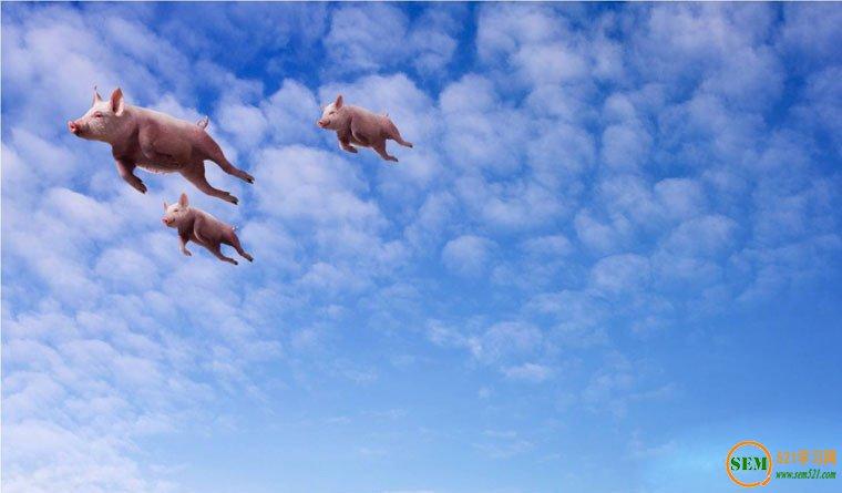 """你是要做""""风口""""上的""""猪"""",还是要做百年企业?"""